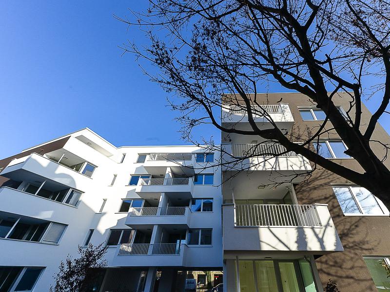 Burgkstraße 1 in Dresden – Blick auf das Feng-Shui-Haus