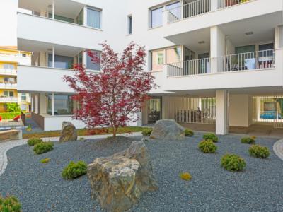 Burgkstraße 1 in Dresden – Japanischer Steingarten des Feng-Shui-Hauses